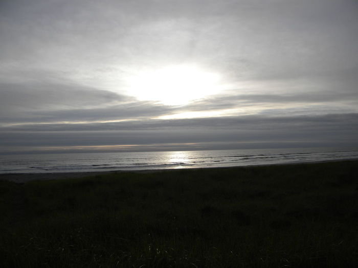 Long Beach Pacific Northwest  Washington Beach Beauty In Nature Day Grass Horizon Over Water Landscape Monochrome Nature No People Outdoors Pacific Ocean Scenics Sea Sky Sunset Tranquil Scene Tranquility Water