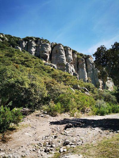 Cliff Adventure