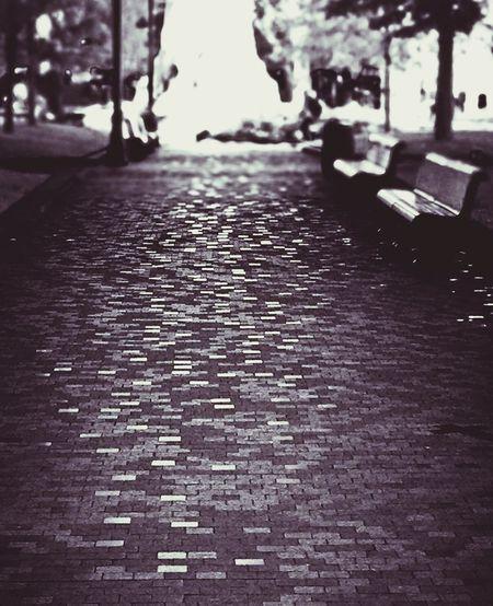 Pathway Path Black & White Blackandwhite Photography Streetphotography Black And White Blackandwhite Shades Of Grey