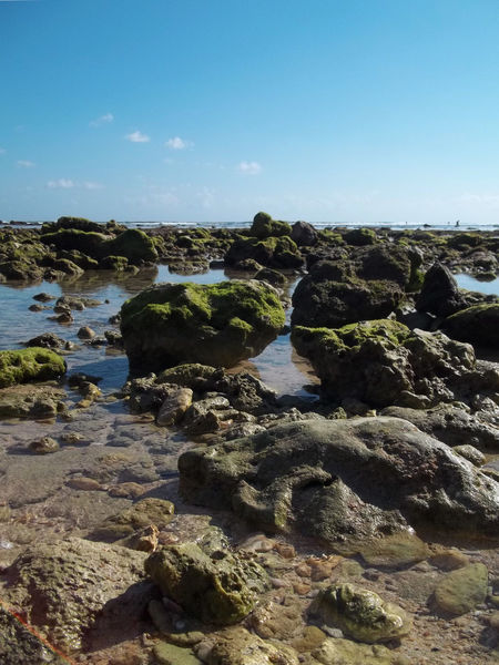 Scenic Rocks Beach Nature Nature Photography Beach Beauty In Nature Clear Sky Landscape Moss Nature Nature Beach Nature_collection Naturelovers No People Outdoors Rijallblues Rock Rock - Object Scenics Sea Sky Stone - Object Stones Stones & Water Tranquil Scene Tranquility Water