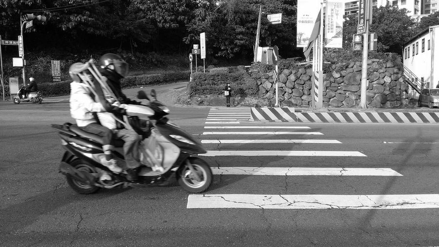 Scooty at zebra crossing on road