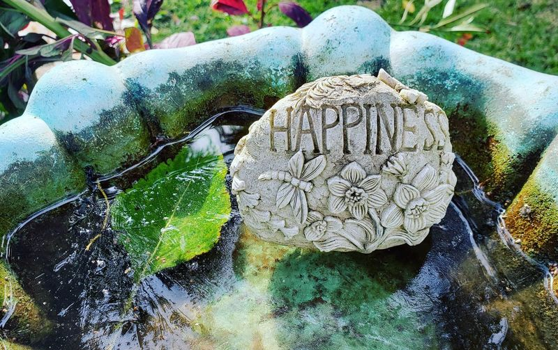 Happiness on