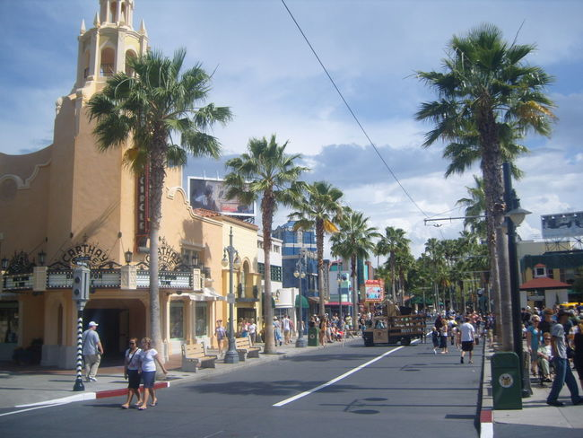 Orlando Florida Disney Disney's Hollywood Studios Theme Park Palm Trees Chillin Walking Around Enjoying Life Lovely Weather