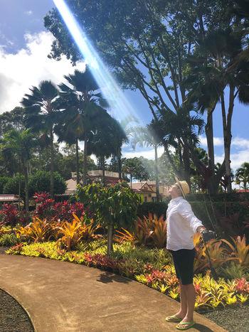 Casual Clothing Dole Plantation Dramatic Lighting Freedom Hawaii Hawaiian Heaven Holy Holy Week Light Majestic Man Nature Outdoors Pineapple Sunbeam Sunshine Tourist Tourist Attraction  빛내림 On The Way One The Way