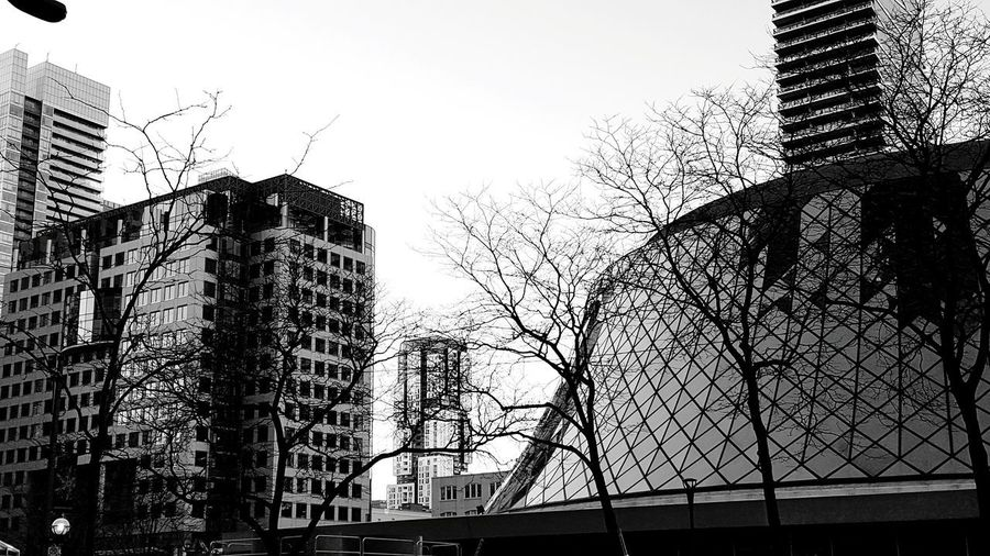 Classic vs modern chic architectures Condominium Roy Thompson Hall Modern Architecture Black And White Toronto The 6ix Towers Downtown Skyscraper Sky Architecture Built Structure Building Exterior City