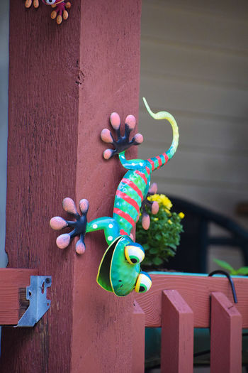Close-up of multi colored wall ornament