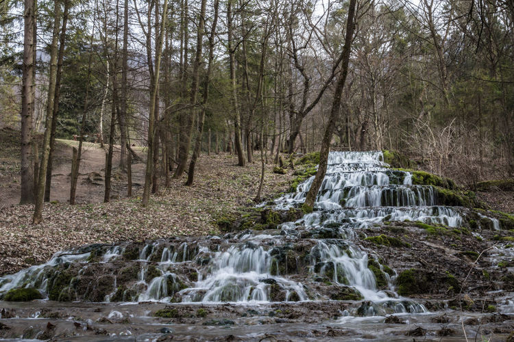 Cold Cold Temperature Day Flowing Flowing Water Footpath Forest Fountain Hungary Long Exposure Motion Outdoors Power In Nature River Szalajka-völgy Szilvásvárad, Hungary The Way Forward Tree Tree Trunk Water Waterfall Weather Winter