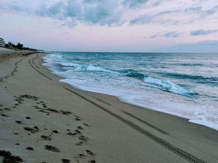 Sunrise Tequilla Sunrise Palm Beach Island, Florida Early Morning Ocean Beachphotography Nature Nature's Beauty Serene Outdoors Palm Beach Ocean Water Wave Sea Low Tide Beach Sand Sand Dune Beauty Tide EyeEmNewHere Summer Exploratorium