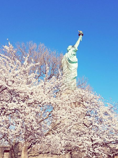 Statue Sky Day No People Blue Clear Sky Outdoors Travel Destinations Sculpture Nature Libertystatue  Eyem Gallery Samsungsnapshooter Eyeem Photography Samsungphotography Sunny Weather Sunlight Spring Photography Newyorkphotography Newyorkstreet Newyorkstate Newyorkstateofmind Newyorkcitylife