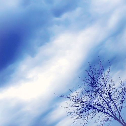 Cobalt Blue By Motorola IPSSkies