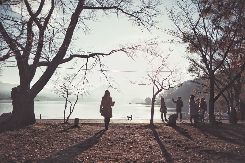 Bokeh Japan Nature Vscocam Streetphotography Light And Shadow Tree Real People Nature Plant Lifestyles Women Water
