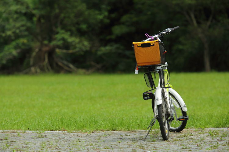 Low angle shot of bicycle with packet in the basket parked in park