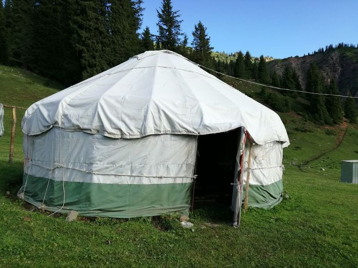 Tent in grass