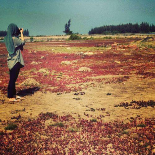 Myhobby Rindu pegang kamera lagi next time 2015 bebas for segaka kegiatan, data2hahahha