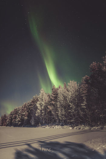 Aurora dance Beauty In Nature Night Sky Winter Snow Nature Green Color Tranquility Star - Space Tranquil Scene Astronomy Aurora Borealis Northern Lights Exploring Scenics EyeEm Best Shots Green Color Landscape Outdoors Taking Photos Backgrounds Nature_collection Travel Destinations Hello World Clear Sky