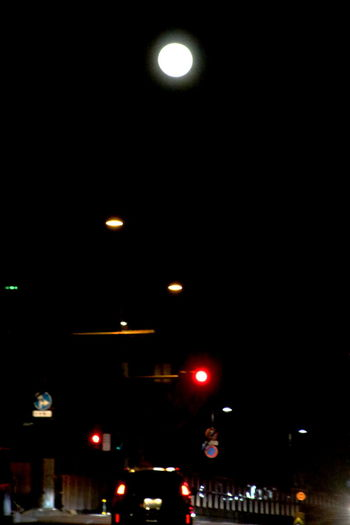 Night Moon 月 灯