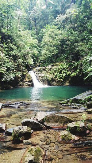 Rio Seco Waterfall Salybia Trinidad, Showcase: February Hikingadventures Hiking Trip Hiking Waterfall Water Landscape Nature Beautiful [ [a:4085006] Flowing Water Nature_collection Beautiful Nature Waterfall hidden Treasures_and_nature