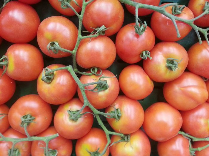 Time since I upload my last photo Healthy Eating Food And Drink Food Tomato Freshness Vegetable Full Frame Healthy Lifestyle Tomatoes Market Stall Market Branch Of Tomatoes Tomatoes Branch Tomatoes Up Close