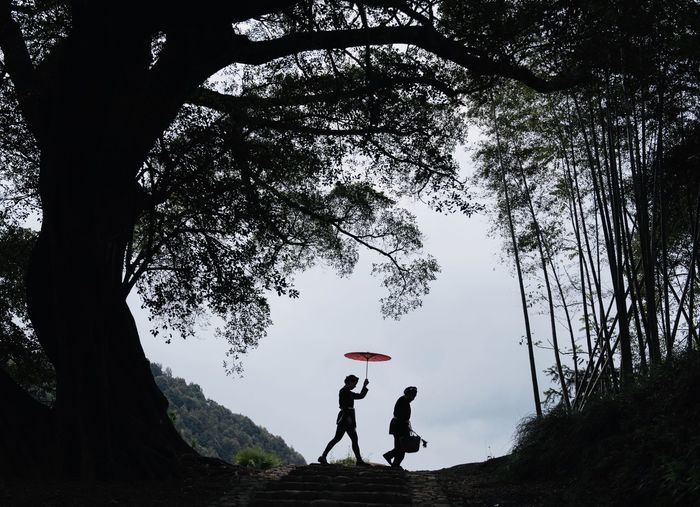 People standing by tree against sky