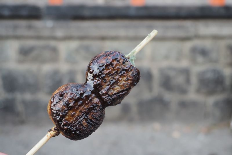 Two of three pieces of Dango, grilled dumplings or mochi with spreading of Japanese styled sauce, skewered on the background, is a wall that falls out of focus. EyeEm Selects Focus On Foreground Close-up Animal Animal Wildlife One Animal Animal Themes Day Outdoors No People Food Food And Drink