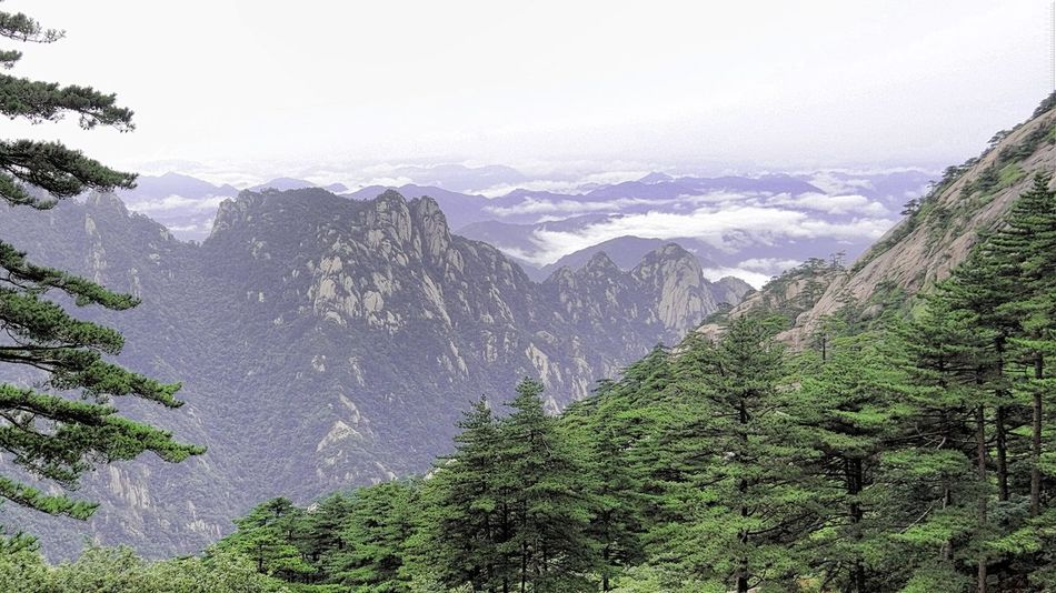 Sea Of clouds Mountains Landscape Sky Clouds Nature Ladyphotographerofthemonth EyeEm China Huangshan Landscapes With WhiteWall The KIOMI Collection The Great Outdoors With Adobe The Great Outdoors - 2016 EyeEm Awards Nature's Diversities Found On The Roll Feel The Journey