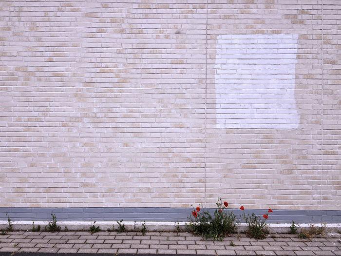 View of brick wall