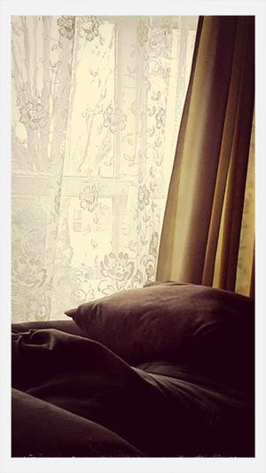 looking through my Window Enjoying Life