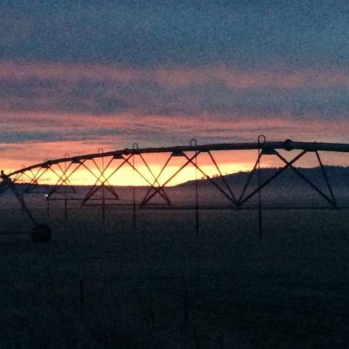 Pivot Sunrise