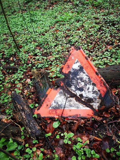 Rusty EyeEm Road Signs Metal And Nature Leaf Communication High Angle View Sunlight Grass Road Sign Traffic Arrow Sign Fallen