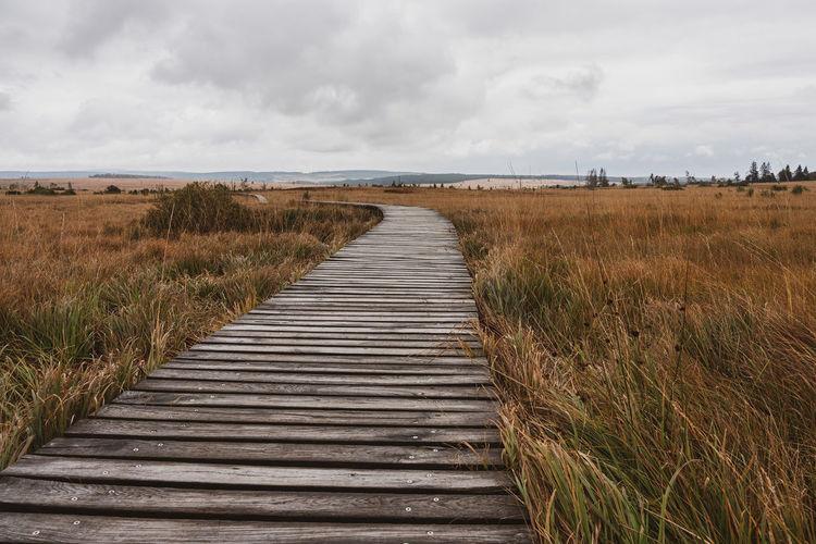 Boardwalk leading towards field against sky
