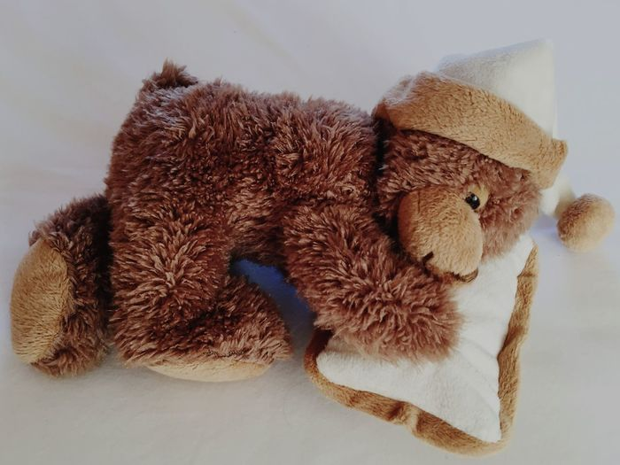 Ours en peluche qui Dort ! Chut , ne faites pas de bruit 💤. Teddy Bear sleeping. Shhh, do not make noise 💤 Teddybear Teddy Bear Ours En Peluche Nounours Oreiller Pillow Peluche Stuffed Animals Stuffed Toy Dormir Sleeping Coussin