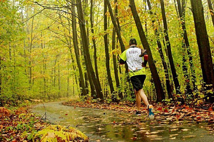 Runing Parkrun Chrzanów Autumn Autumn Colors Forest Autumn🍁🍁🍁 Autumn Forest Parkrun Poland