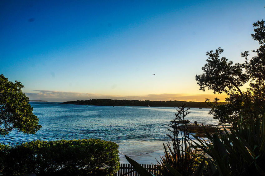 18-55mm Beauty In Nature Blue Bundeena Clear Sky Day Horizon Over Water Nature No People Outdoors Scenics Sea Sky Sony Sony A3000 Sunset Sydney Tranquil Scene Tranquility Tree Water