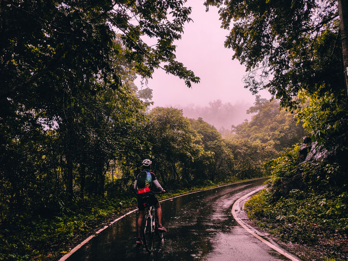 Man riding bicycle on road amidst trees against sky on a foggy day