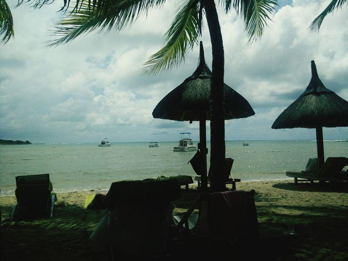 Nature Beach Life