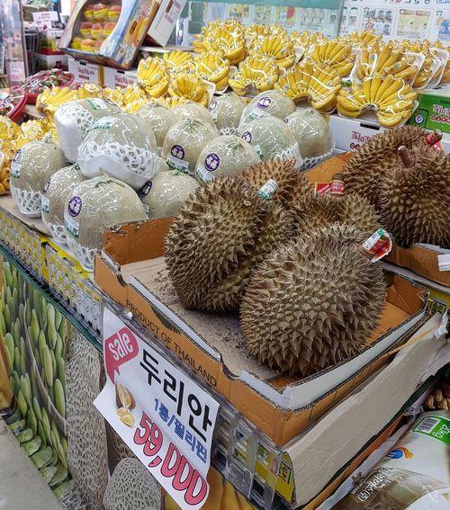 I could not believe my eyes Durians King Of Fruits Gwangjin-gu South Korea Seoul