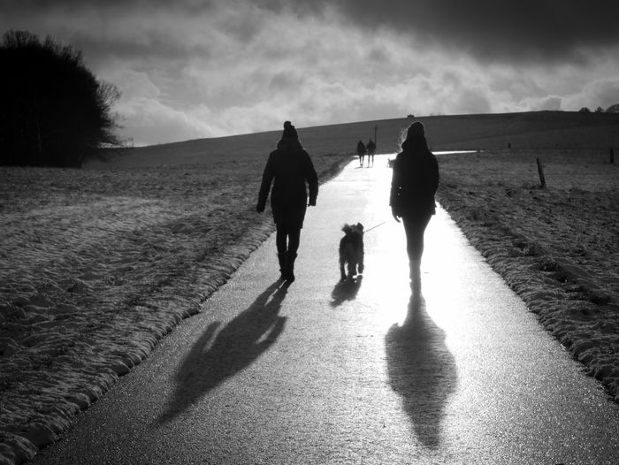 Walking Dog Nature Landscape Togetherness Outdoors Capture The Moment Blackandwhite Blackandwhite Photography Winter Wintertime Rear View Leisure Activity Snapshots Of Life Shadow Road Silhouette Silhouettes