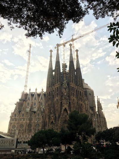 Church Gaudi Leaves Construction