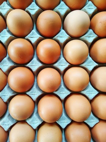 Eggs in recycle container Egg Food In A Row Backgrounds Food And Drink Full Frame Egg Carton No People Healthy Eating Indoors  Food Staple Freshness Day Healthy Lifestyle Cooking Time Healthy Food Cooking Ingredients Raw Food Food Photography Fresh Egg Yolk Omellete