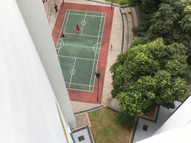 High Angle View Soccer Architecture Sport Day Net - Sports Equipment Built Structure Court No People Soccer Field Playing Field Outdoors Tree