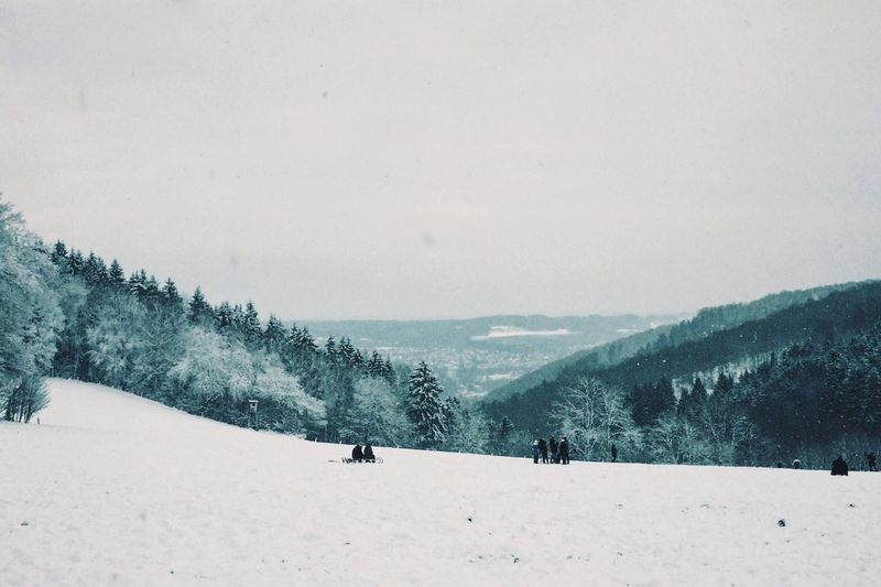 Winterwonderland Winter Wintertime Snow Snow ❄ Schlittenfahren Blizzard Snowing Hagen Landscapes With WhiteWall