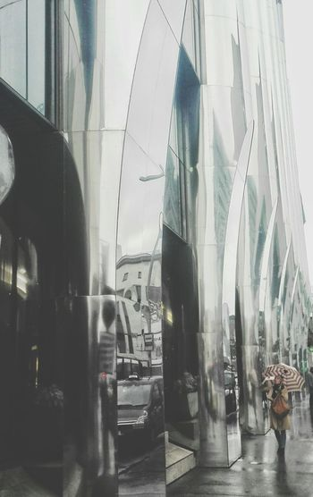 maxi Reflection